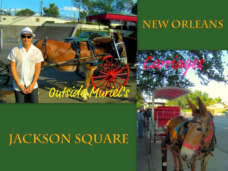 New Orlean trip-2
