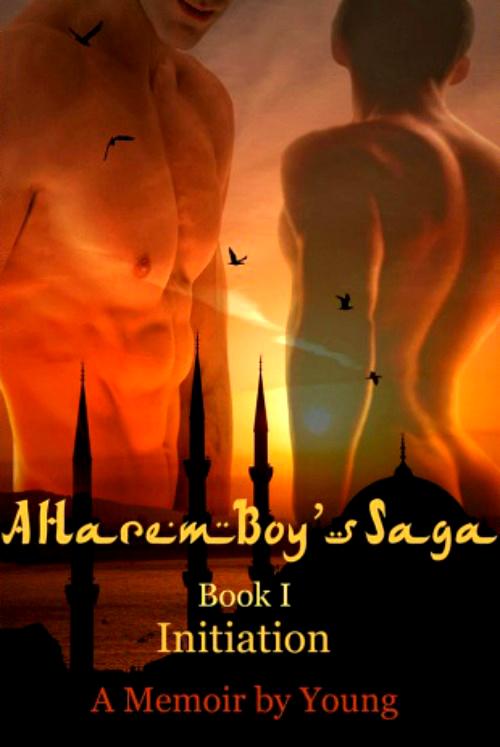 A Harem Boy's Saga  Schedule 2a
