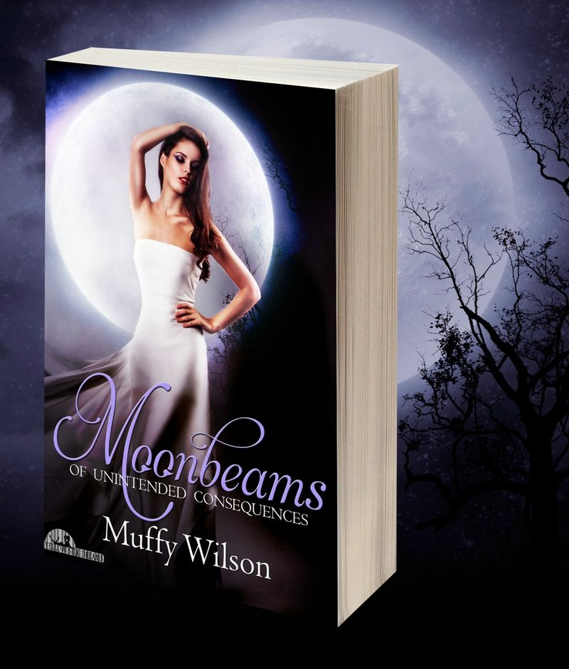 1.1 Moonbeams 3D Image of Book Cover Black