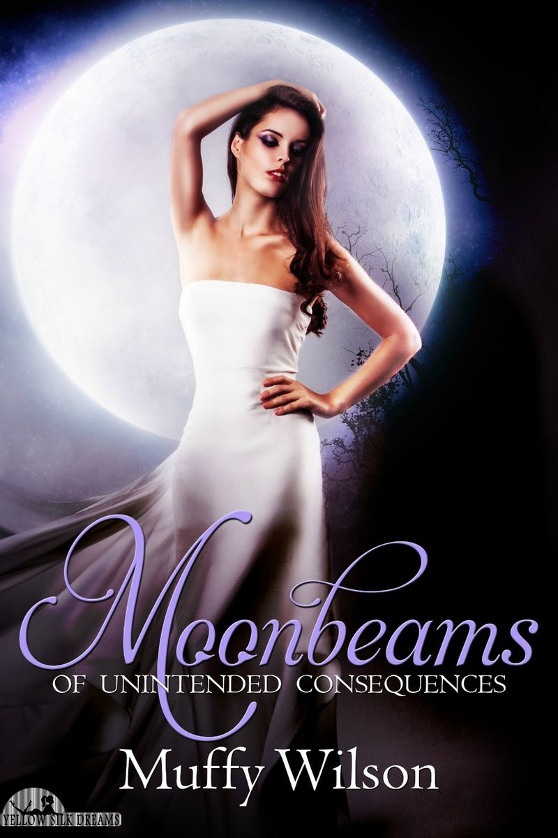1.1 Moonbeams E-Book Cover