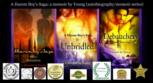 A Harem Boy's Saga -awards-small
