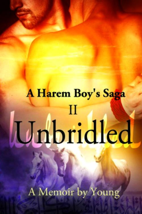 A Harem Boy's Saga  Schedule 2b