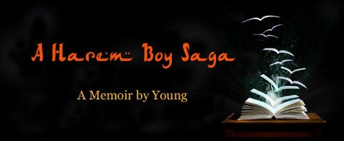 AHaremBoySaga - banner-small