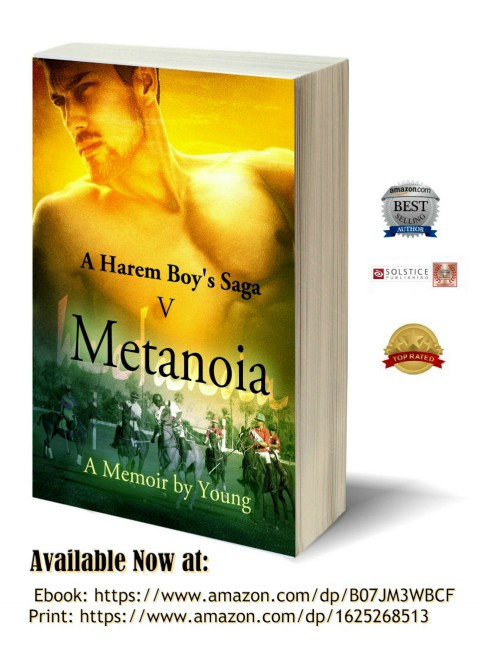 Metanoia 3D-Book-Template-500 pix